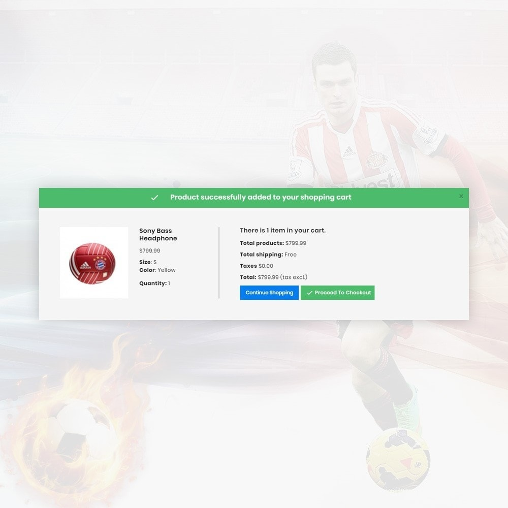 theme - Sport, Aktivitäten & Reise - SportyGo– Sport Super Store - 6