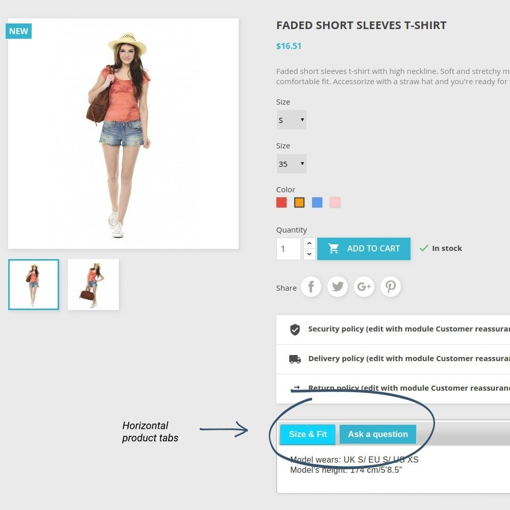 module - Altre informazioni & Product Tab - Product Tabs - 12