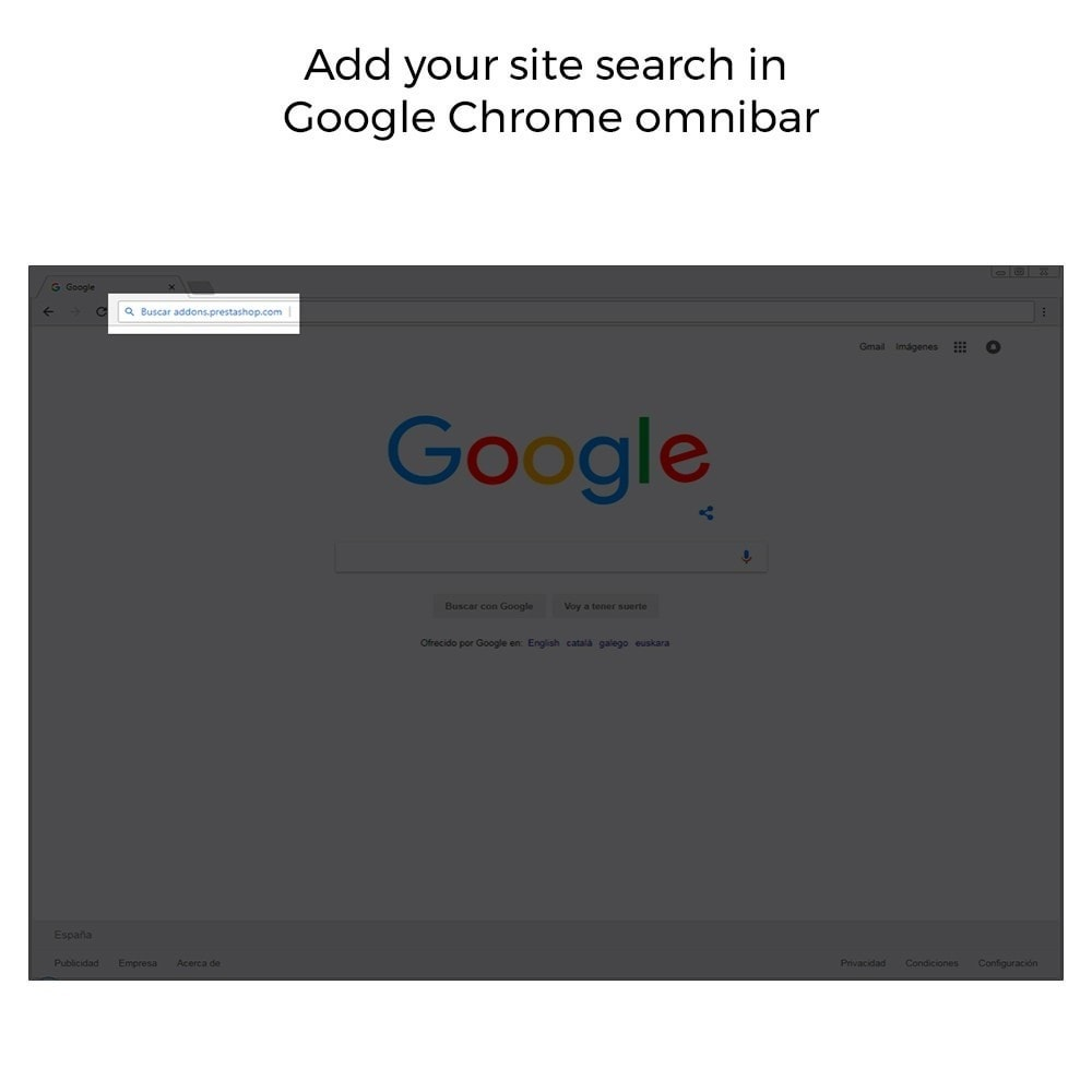 module - SEO (référencement naturel) - Google Sitelink Searchbox - 4