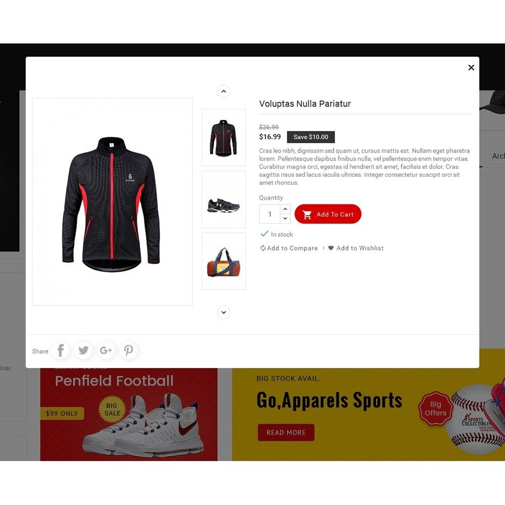 theme - Спорт и Путешествия - Mega Shoppe Sports - 8