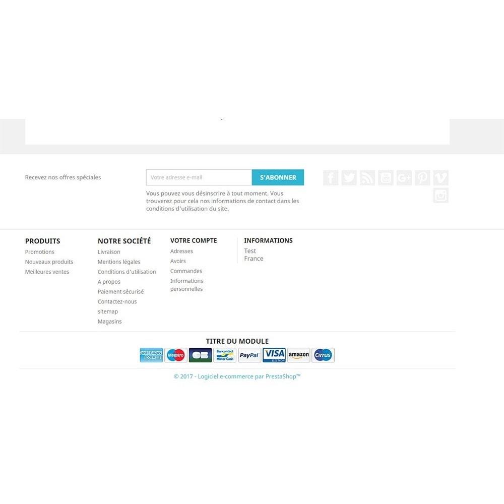 module - Etiquettes & Logos - Payment logo footer - 3