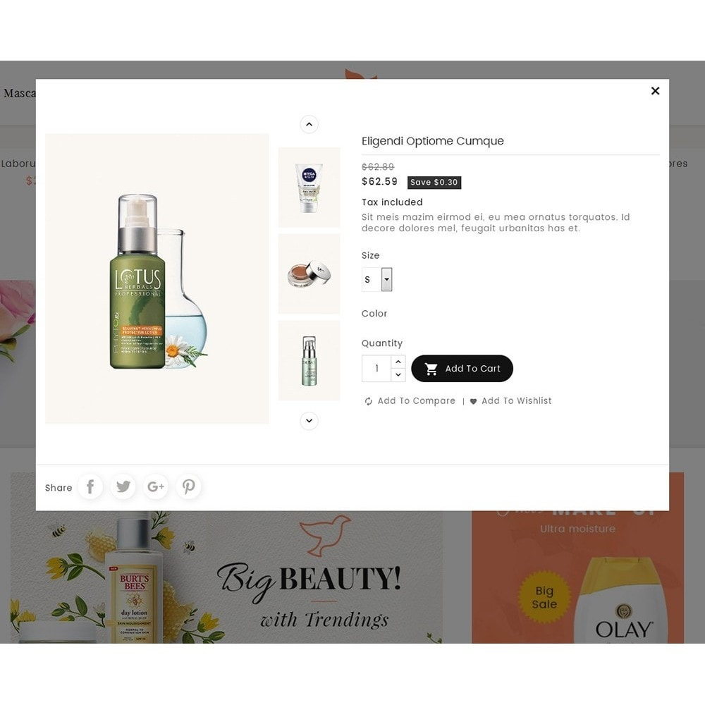 theme - Saúde & Beleza - Beauty Spa & Cosmetics - 7