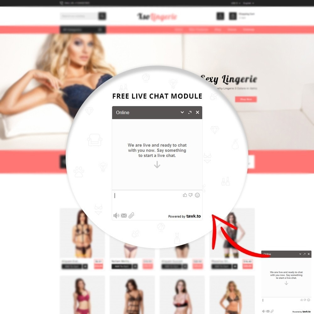 theme - Lingerie & Adulti - XSO Lingerie Store - 6