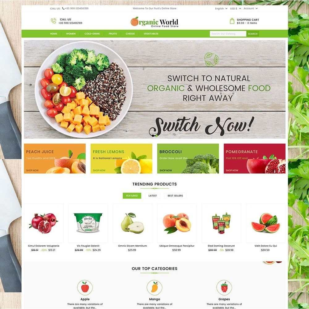 theme - Food & Restaurant - Organic World Food Store - 2