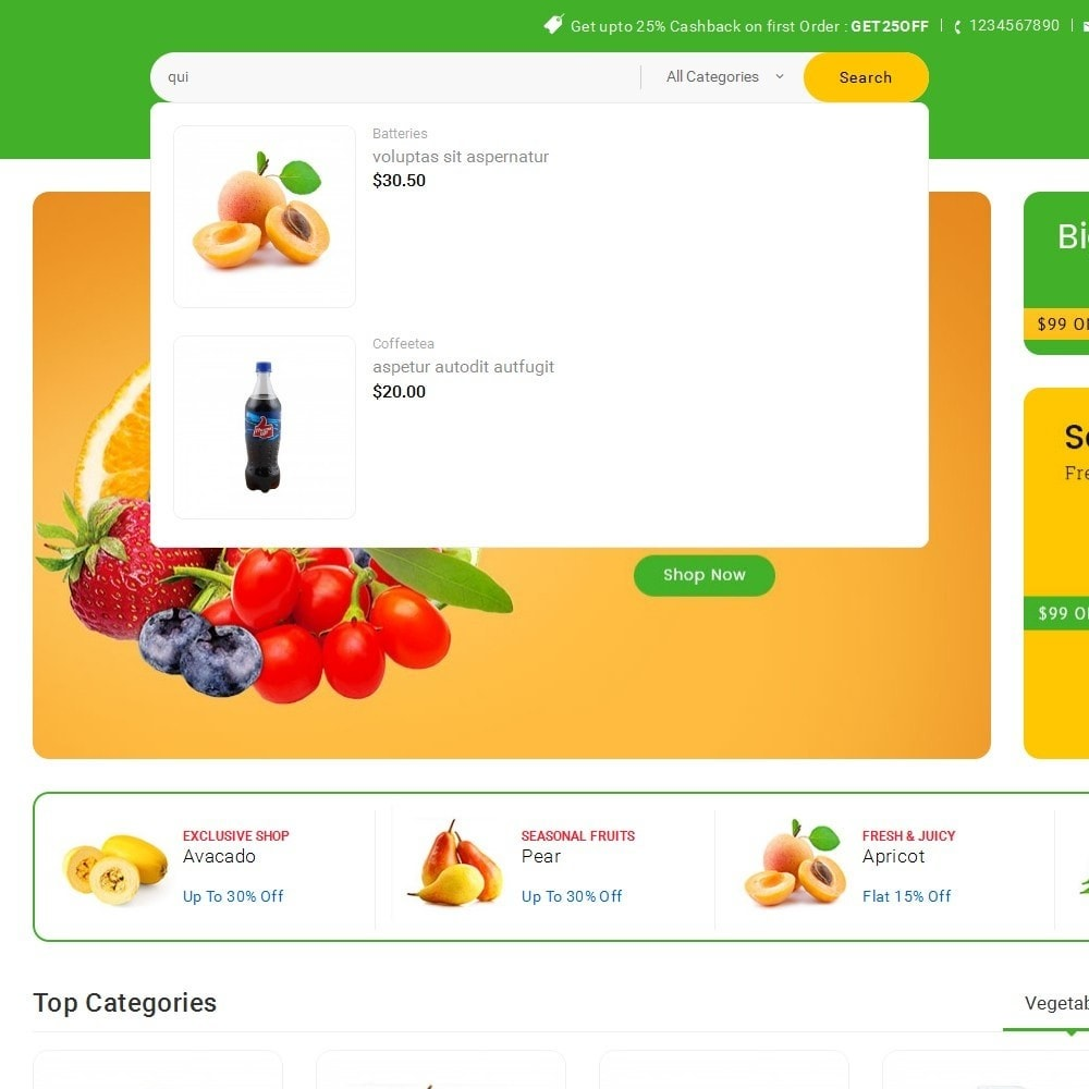 theme - Gastronomía y Restauración - Mega Shoppe Grocery - 11