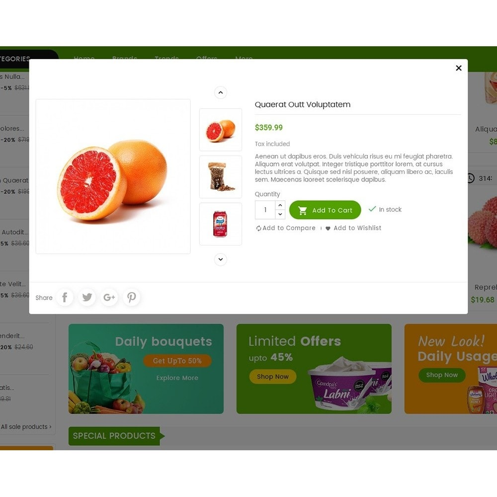 theme - Lebensmittel & Restaurants - Mega Mart Grocery - 9