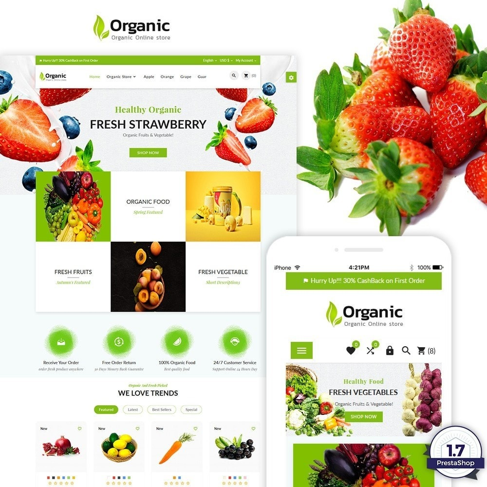 theme - Food & Restaurant - Organic Fresh Food Market Store - 1