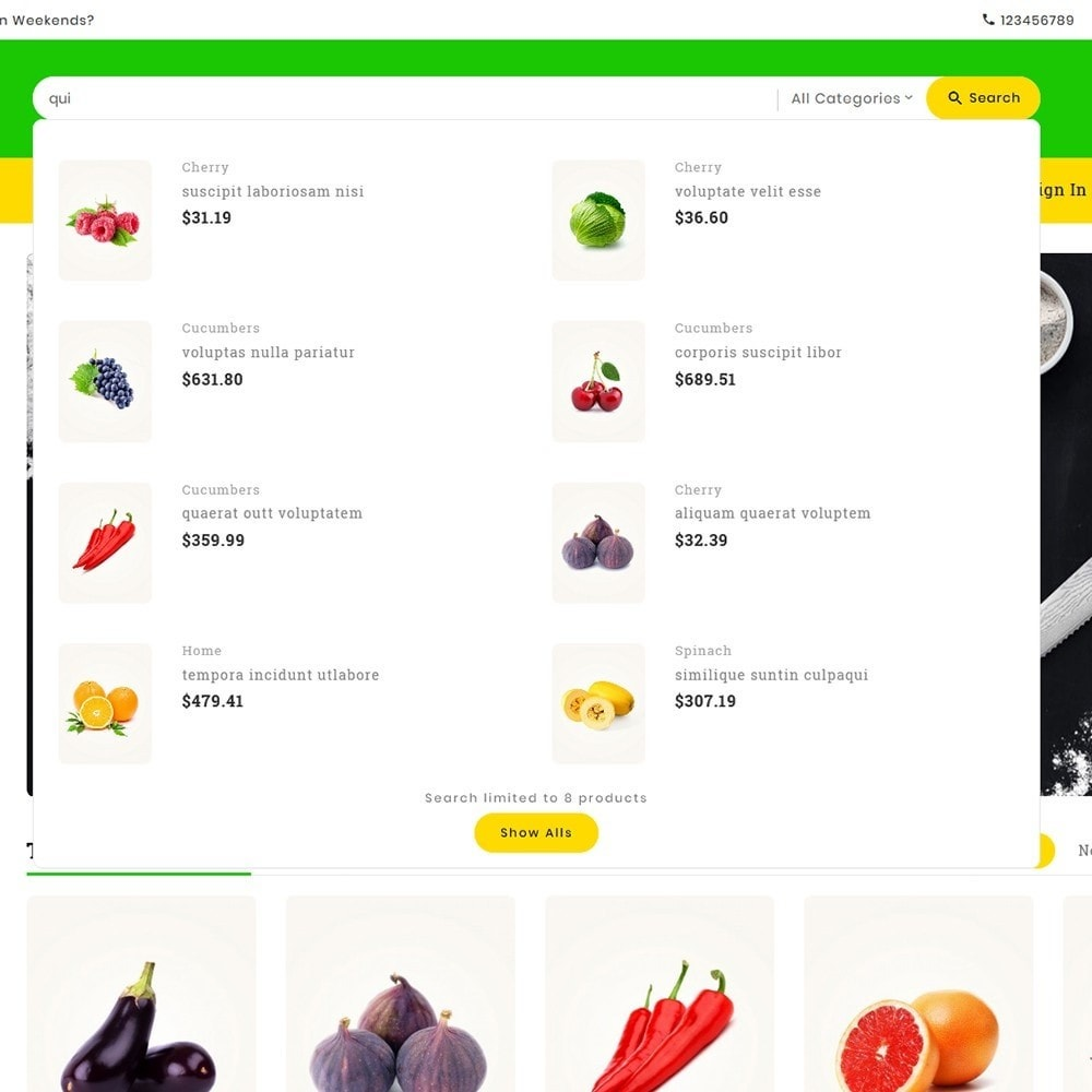 theme - Food & Restaurant - Digital Mart Grocery Food - 11