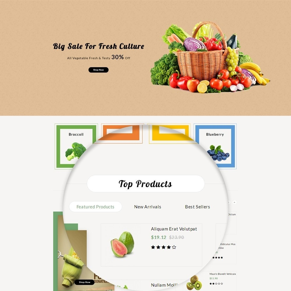 theme - Food & Restaurant - Fresh Culture Organic Store - 8