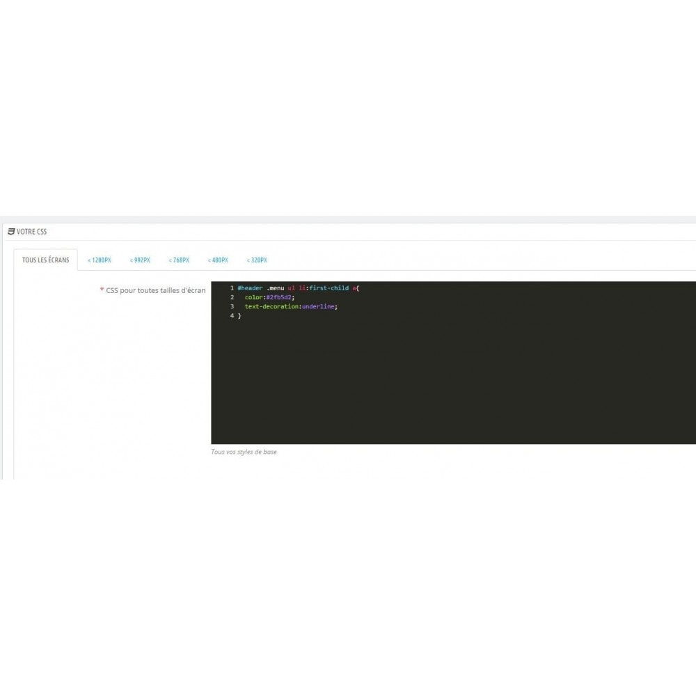 module - Administrationstools - Css & js editor for webmaster - 2