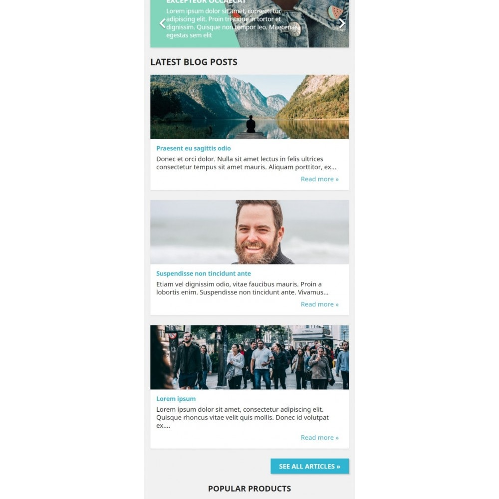 module - Blog, Forum & News - WordPress Integration - 2