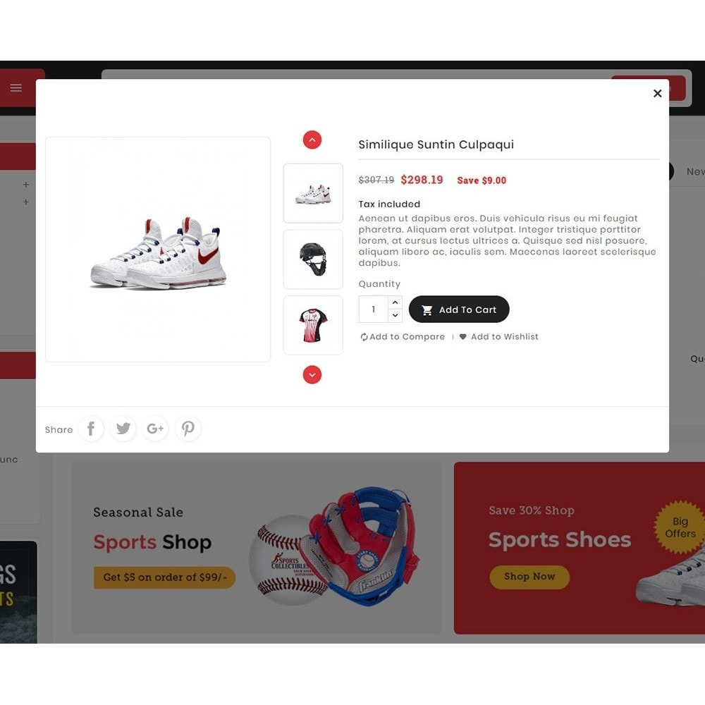 theme - Desporto, Actividades & Viagens - Big Market Sports Store - 8