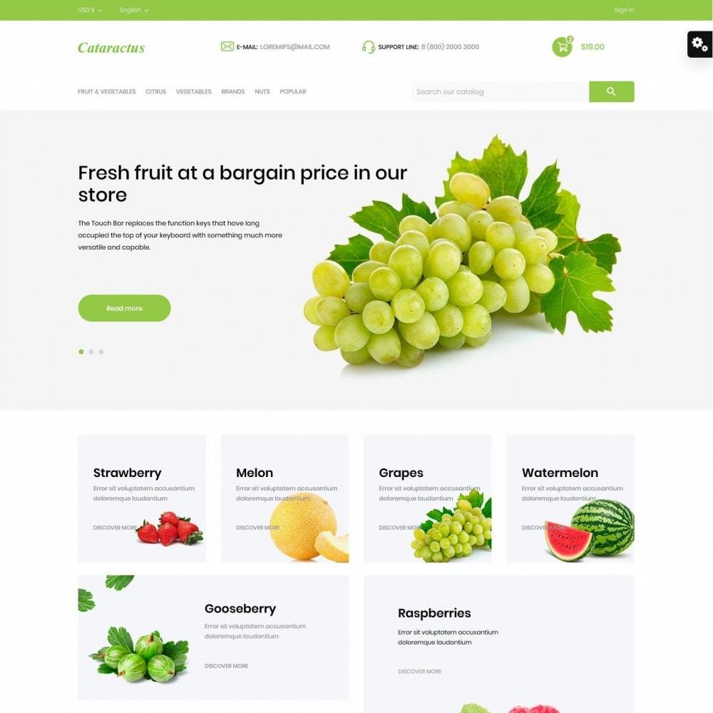 theme - Food & Restaurant - Cataractus - 2