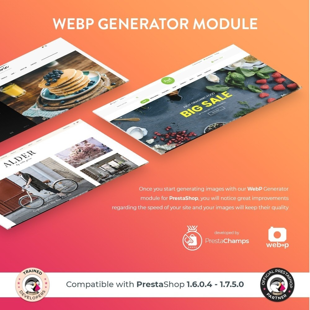 module - Visual Products - Google WebP Image Generator - 2020 Update - 1