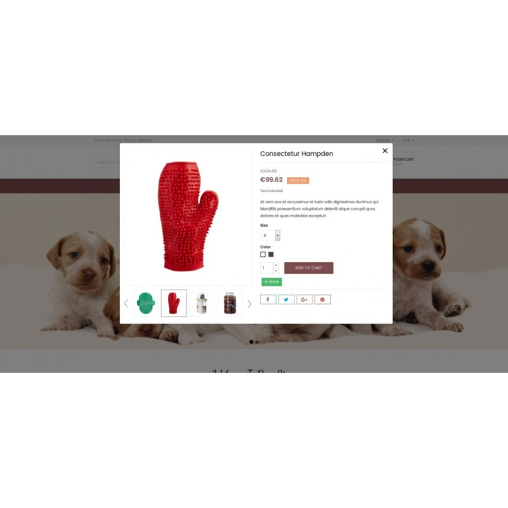 theme - Tier - Dog Store - Pet Food Store - 6