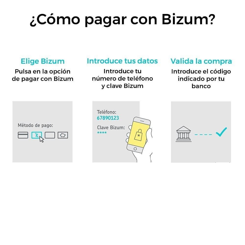 module - Pago con Tarjeta o Carteras digitales - Bizum - Pago con el móvil (con recargos y descuentos) - 2