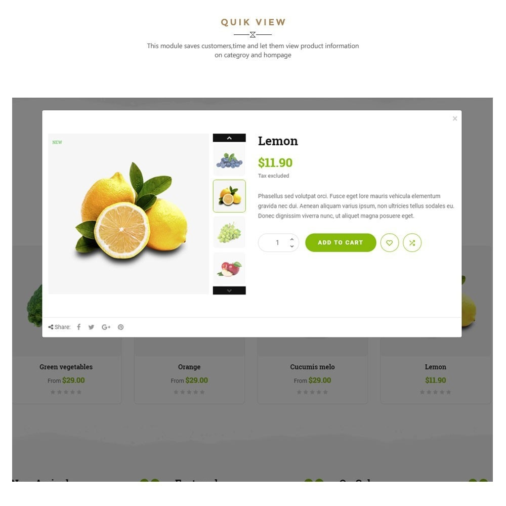 theme - Gastronomía y Restauración - Kola – Organic & Food Store - 7