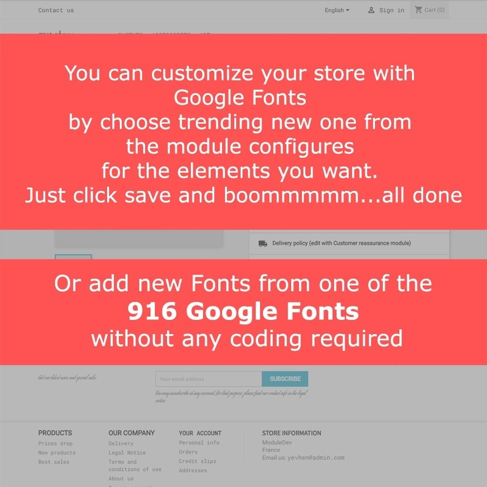 module - Page Customization - Google Fonts - 2