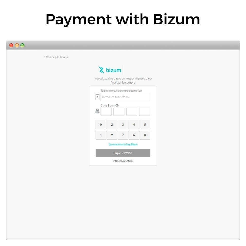 module - Payment by Card or Wallet - Bizum - Mobile payment - 3