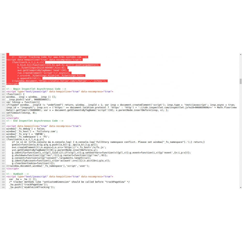 module - SEO (Referenciamento natural) - HTML personalizado dentro de tags de cabeça - 1