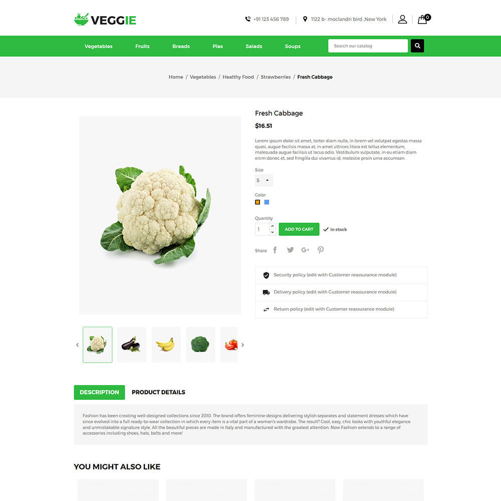theme - Food & Restaurant - Vegitables Food - Fruit Grocery Store - 5