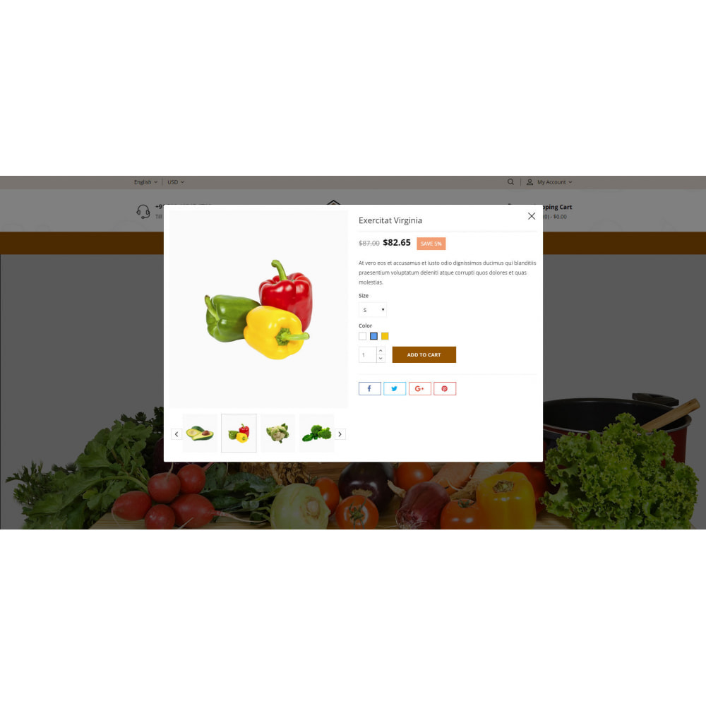 theme - Food & Restaurant - FreshVeg - Grocery Store - 6
