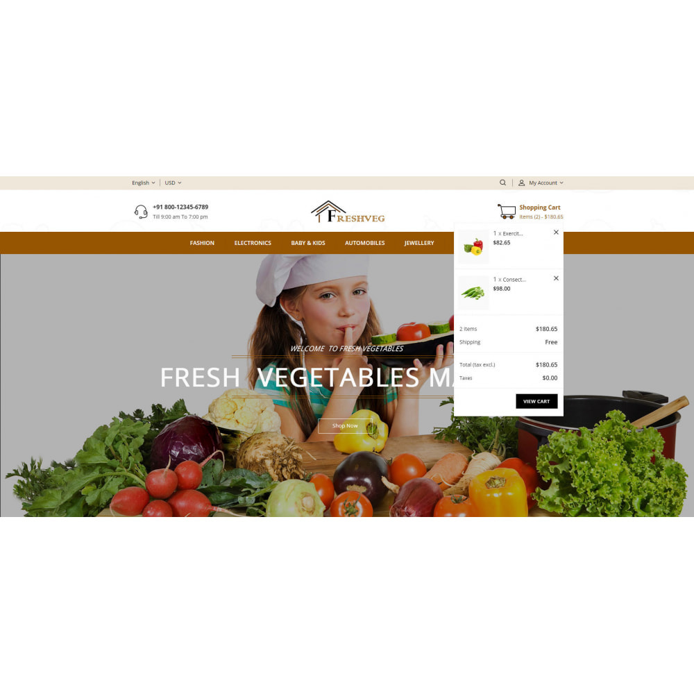 theme - Food & Restaurant - FreshVeg - Grocery Store - 7