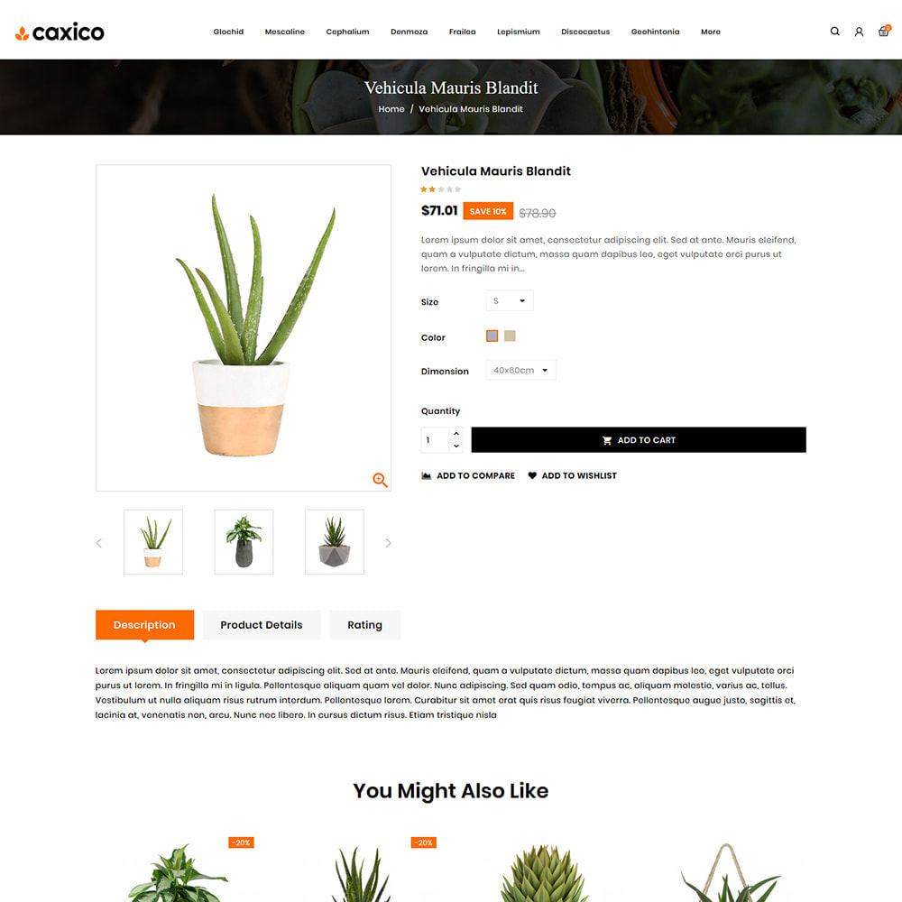 theme - Home & Garden - Caxico - Plant Store - 4