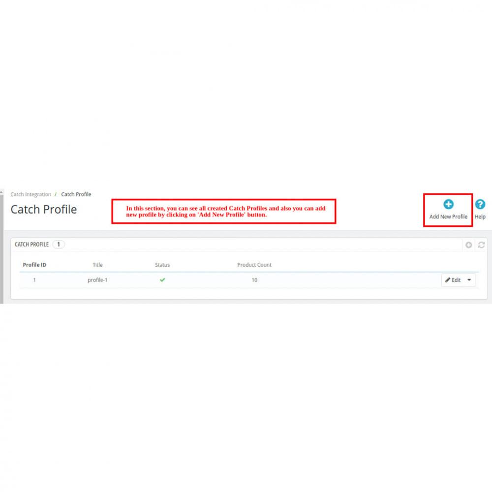 module - Revenda (marketplace) - Catch Integration - 6