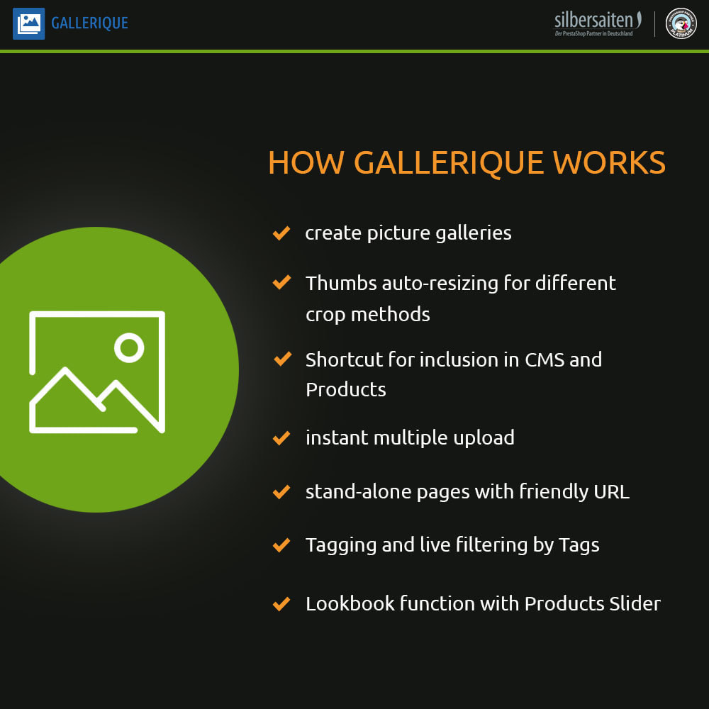 module - Sliders & Galeries - Gallerique - Impression de photos - 1