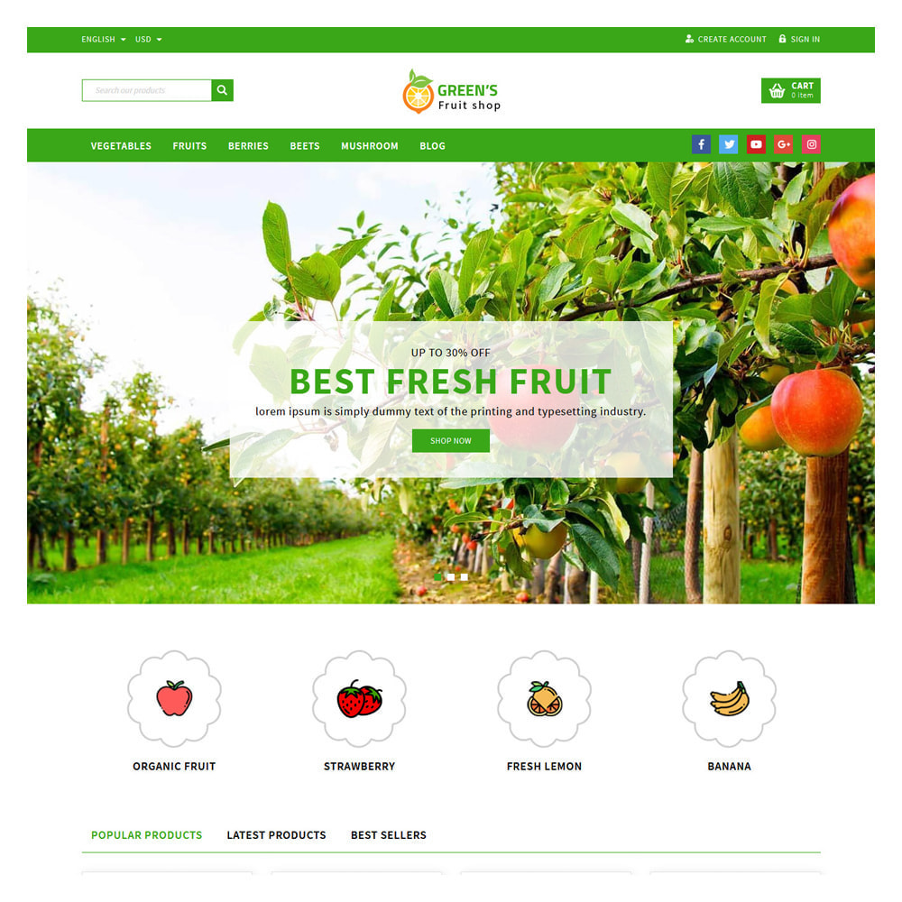 theme - Food & Restaurant - Green Vegetable & Fruits Shop - 2