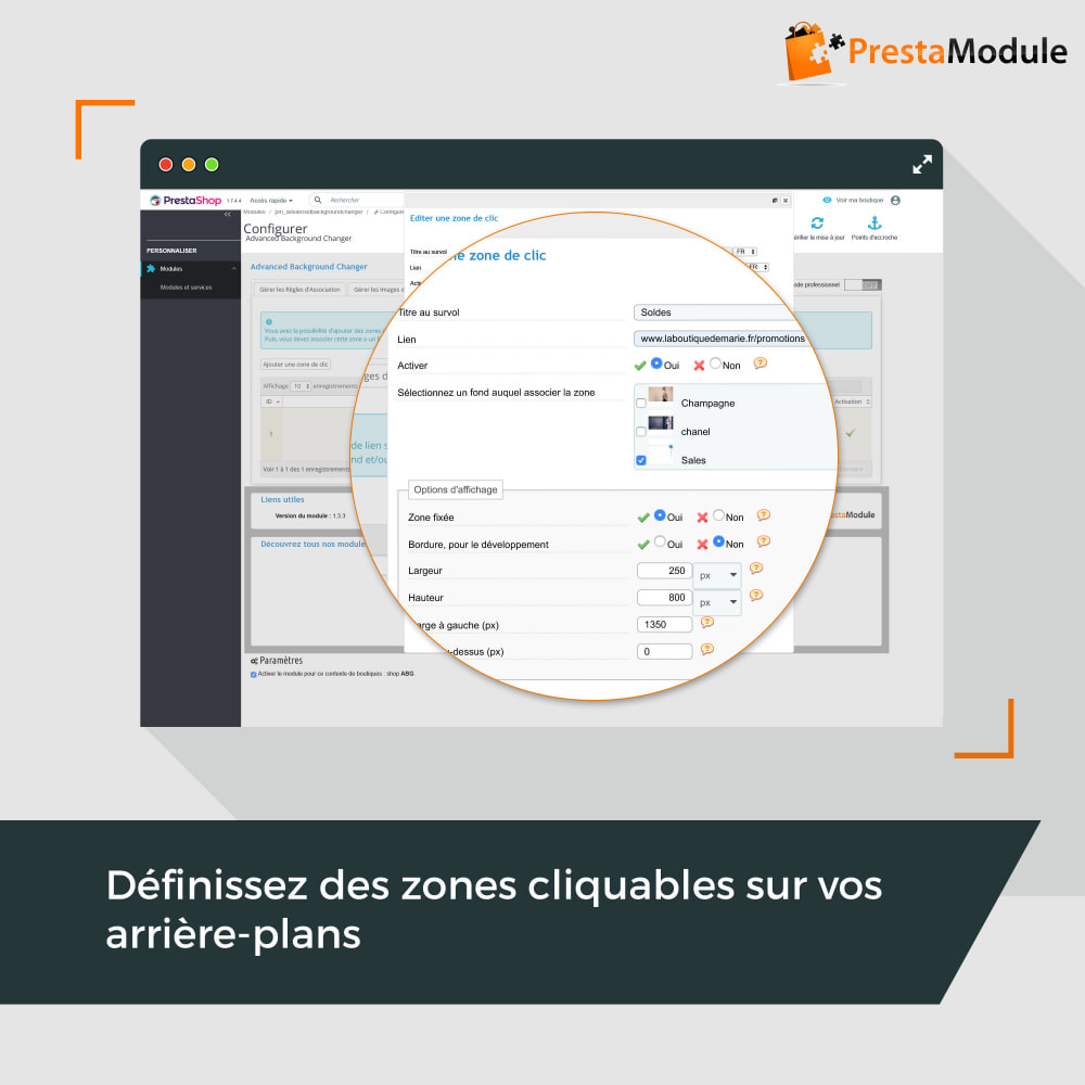 module - Personnalisation de Page - Advanced Background Changer - 3