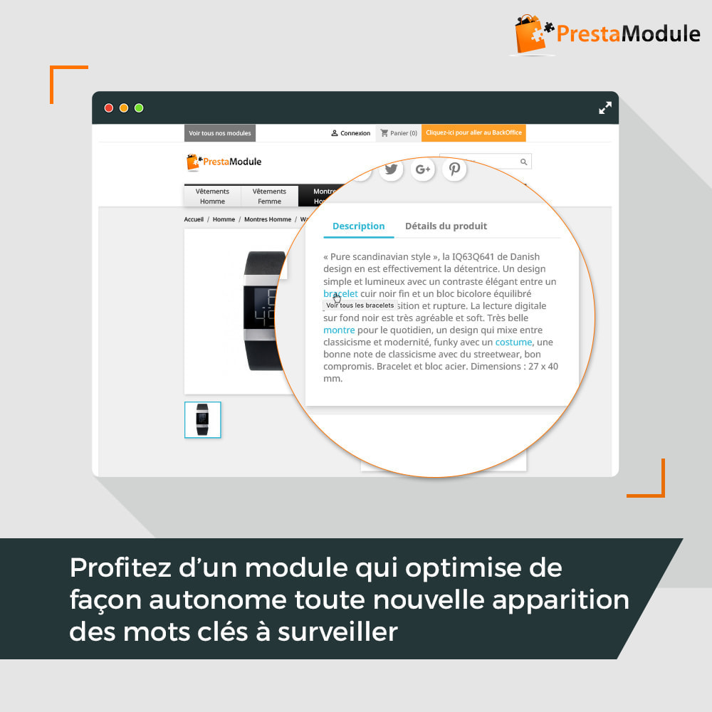 module - SEO (référencement naturel) - SEO Internal Linking PRO - 4