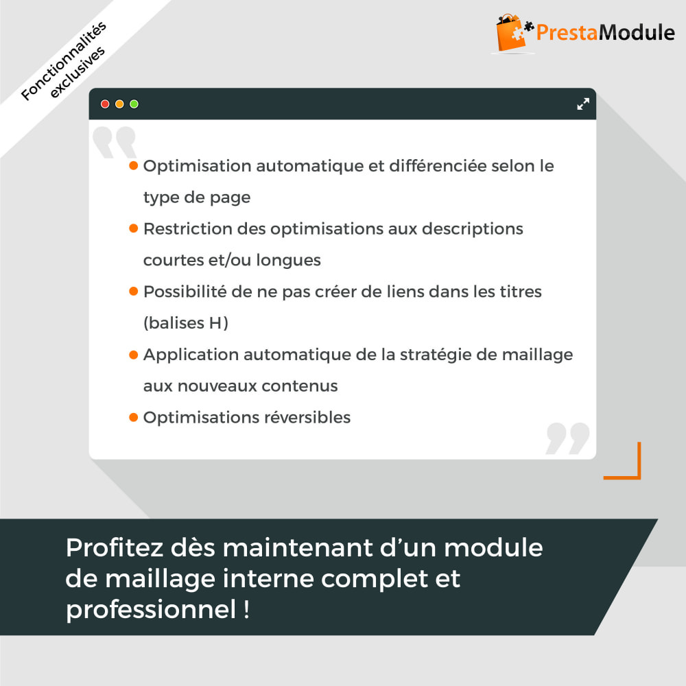 module - SEO (référencement naturel) - SEO Internal Linking PRO - 5