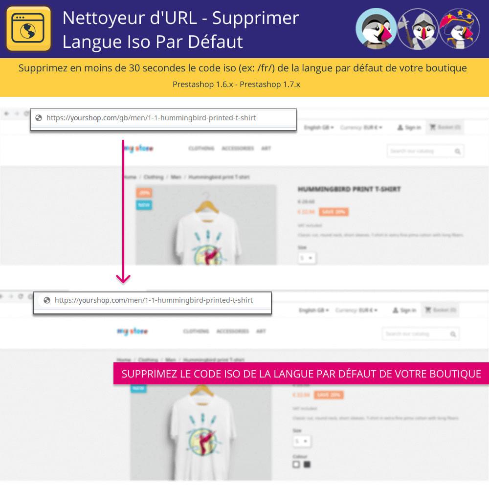module - URL & Redirections - Nettoyeur D'URL - Supprimer Langue Iso Par Défaut - 2
