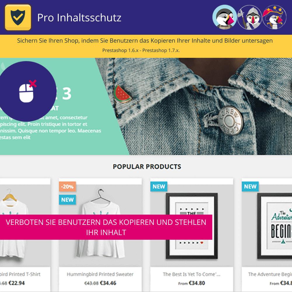 module - Sicherheit & Brechtigungen - Pro Content Protection - Schützen Sie Ihre Inhalte - 2
