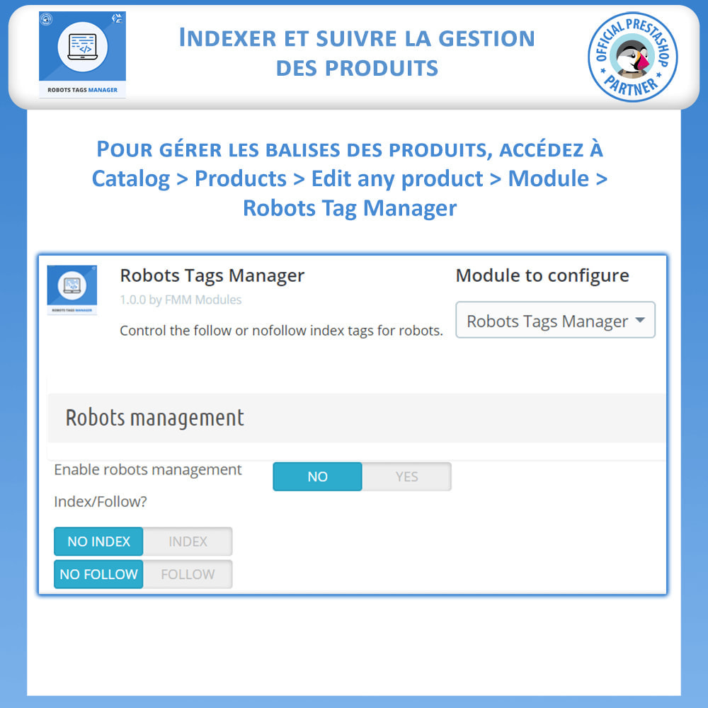 module - SEO (référencement naturel) - Meta Robot Tags - NoFollow NoIndex Manager - 4