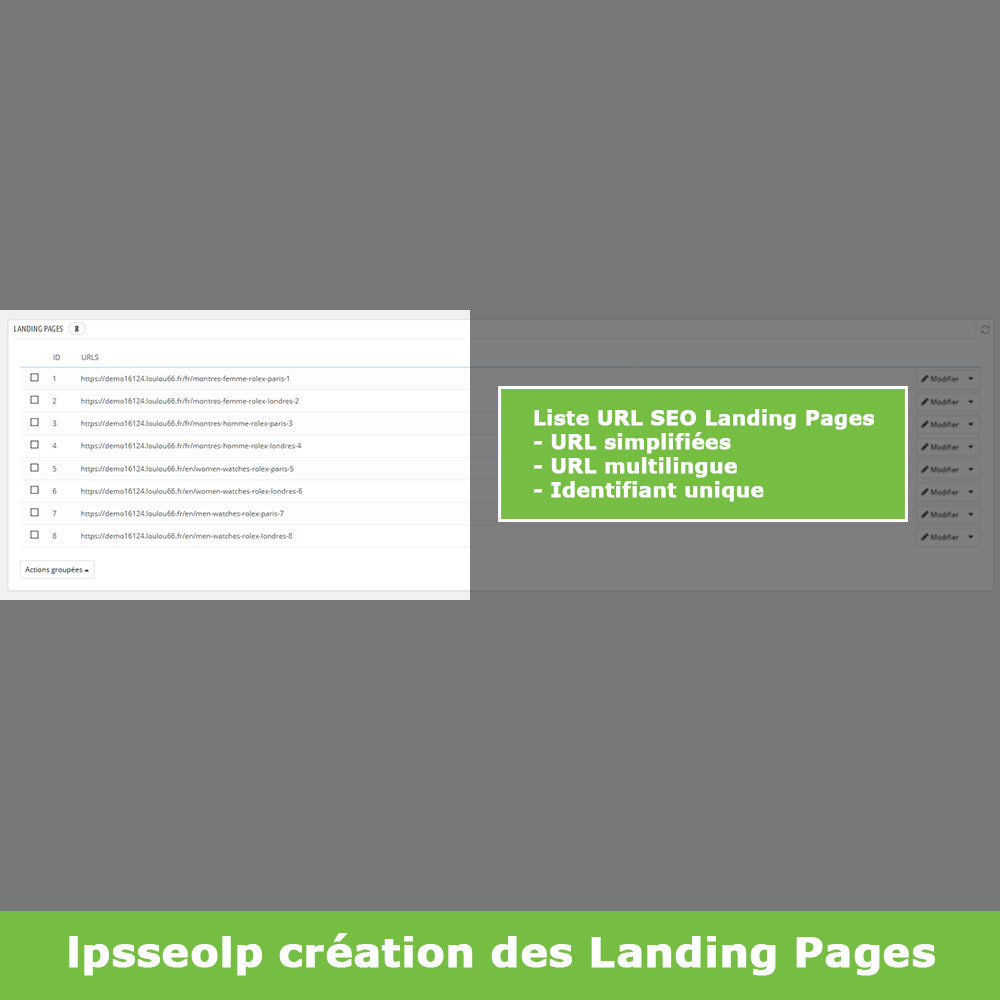 module - SEO (référencement naturel) - SEO Dynamic Landing Pages - 5