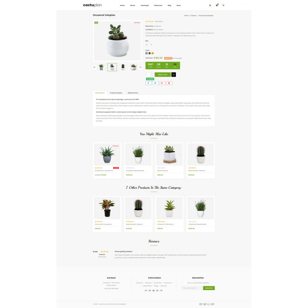theme - Home & Garden - Cactuplan - Multipurpose Store - 12