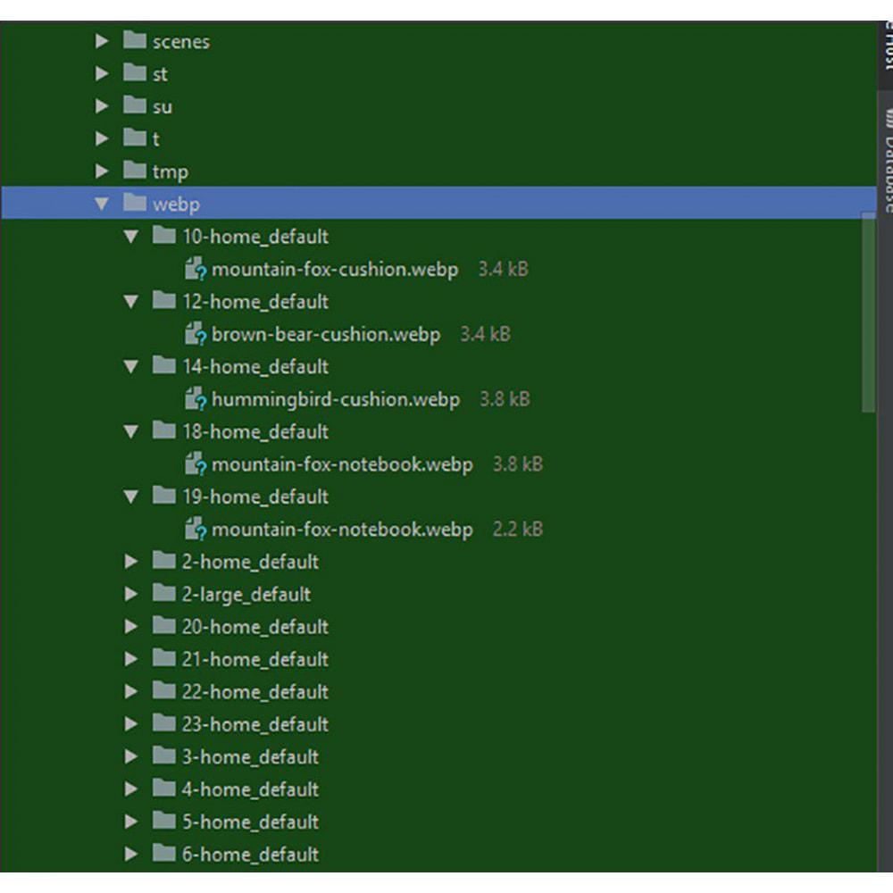 module - Website Performance - Webp convertor images PageSpeed optimization - 3