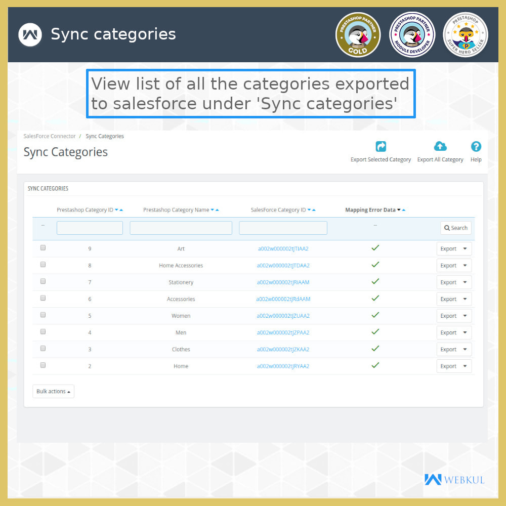 module - Third-party Data Integration (CRM, ERP...) - Salesforce Connector - 4