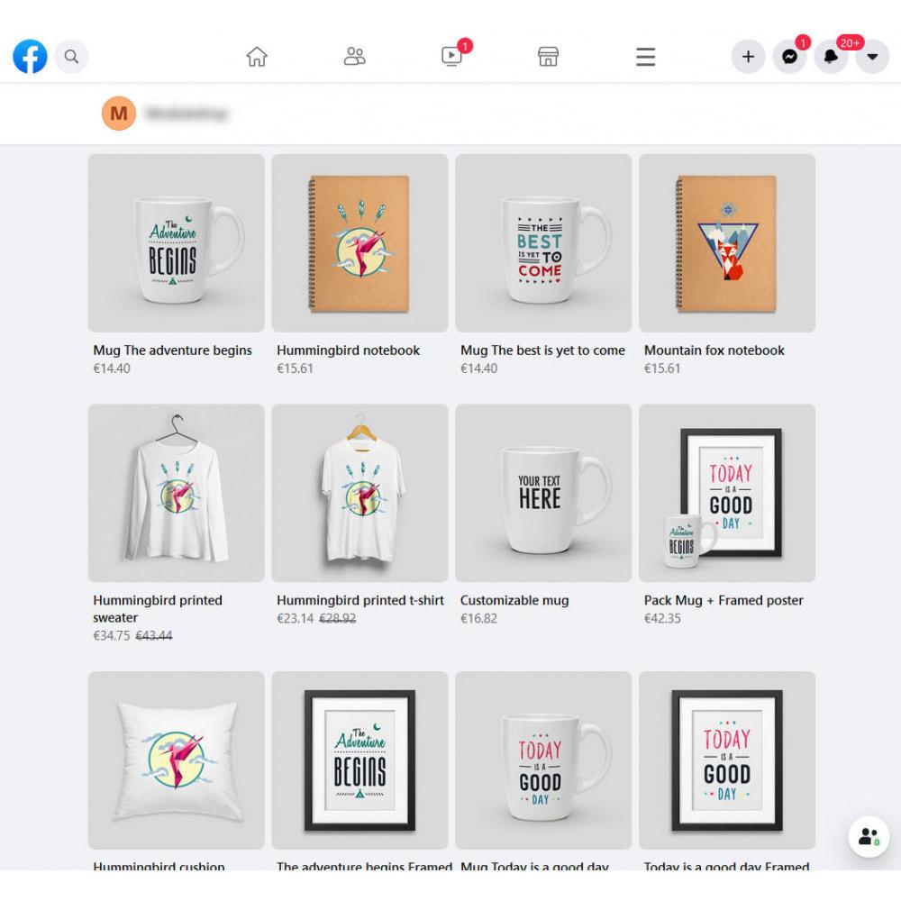 module - Produkten op Facebook & sociale netwerken - Social Networks Shop Catalog Importer - 4