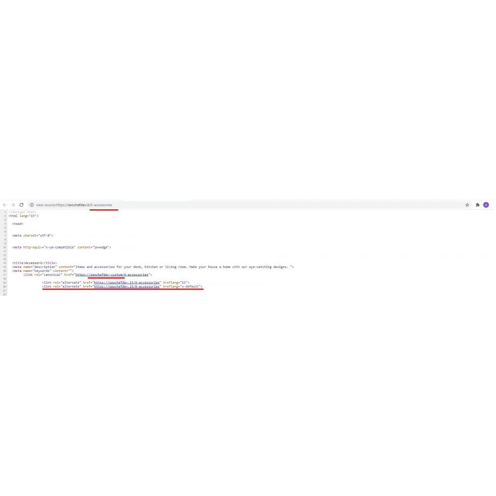 module - SEO (Indicizzazione naturale) - SEO Canonical & Hreflang - 3