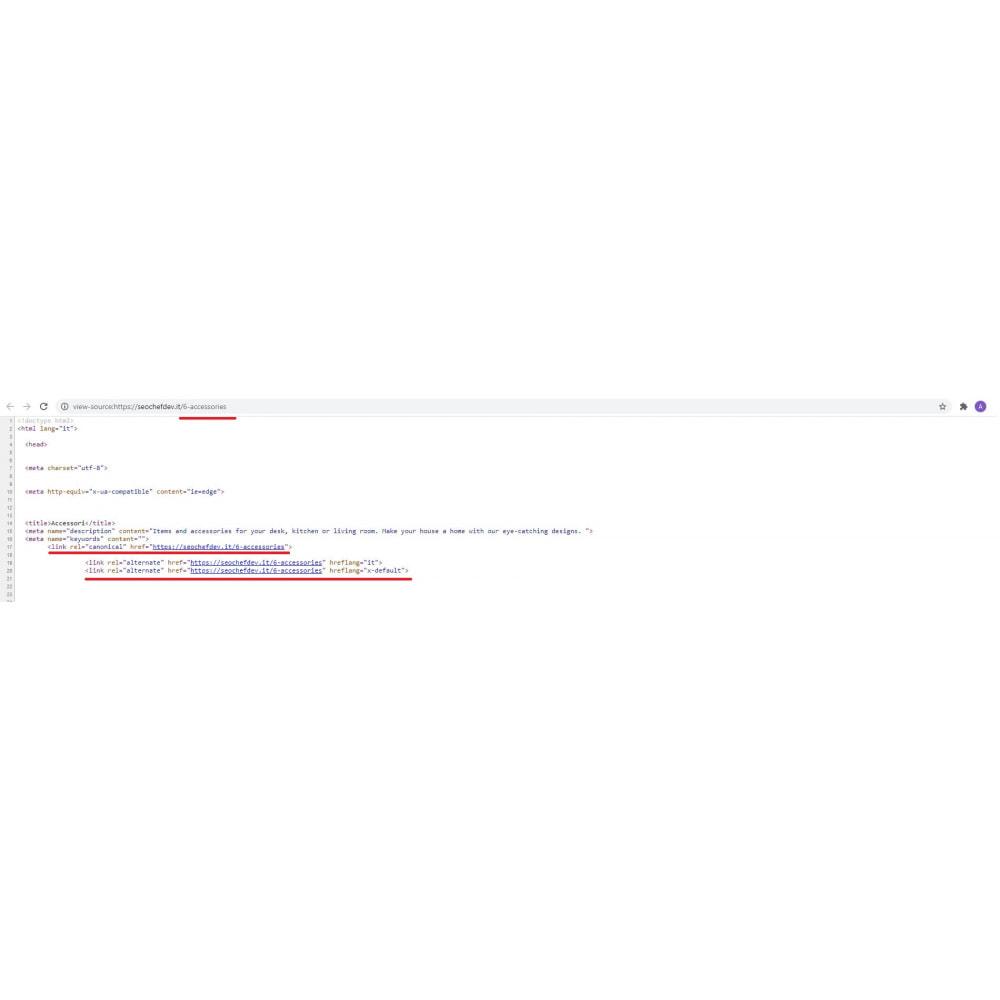 module - SEO (Indicizzazione naturale) - SEO Canonical & Hreflang - 5