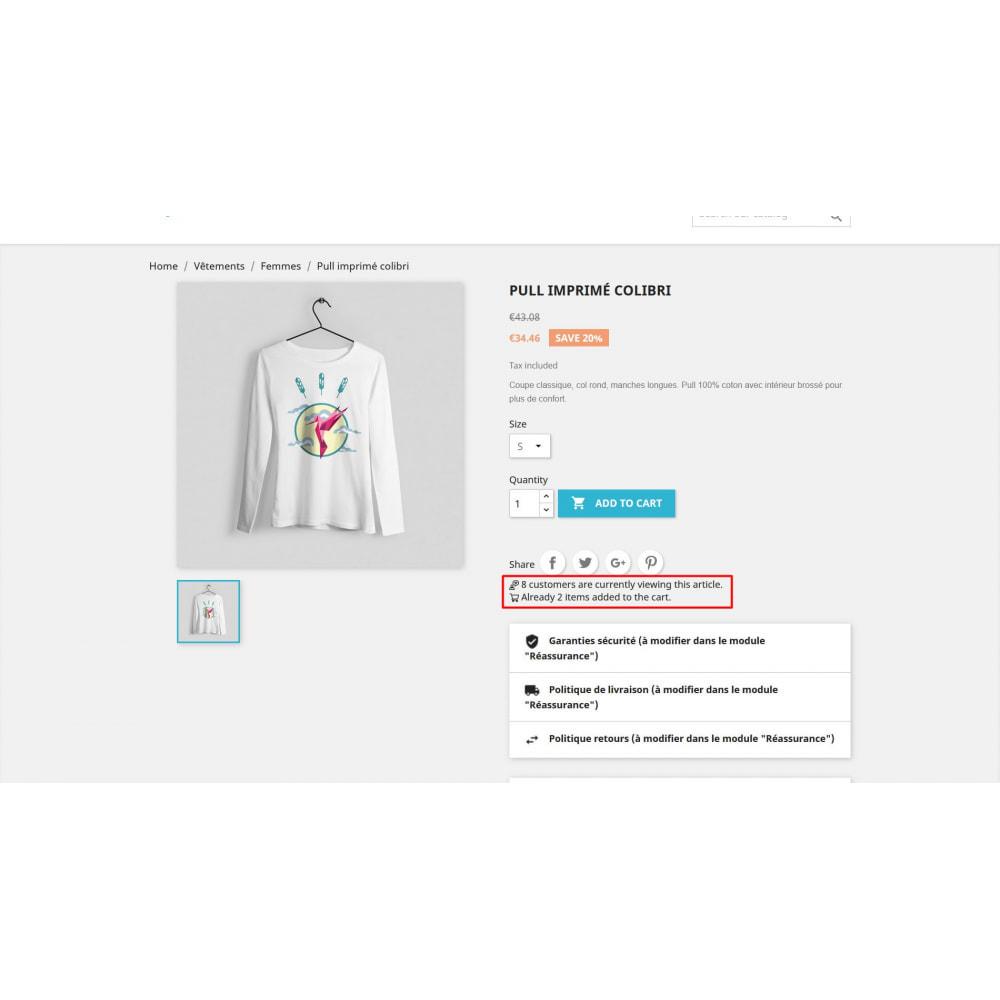 module - Дополнительной информации и вкладок товара - Посетите счетчик на странице продукта - 3