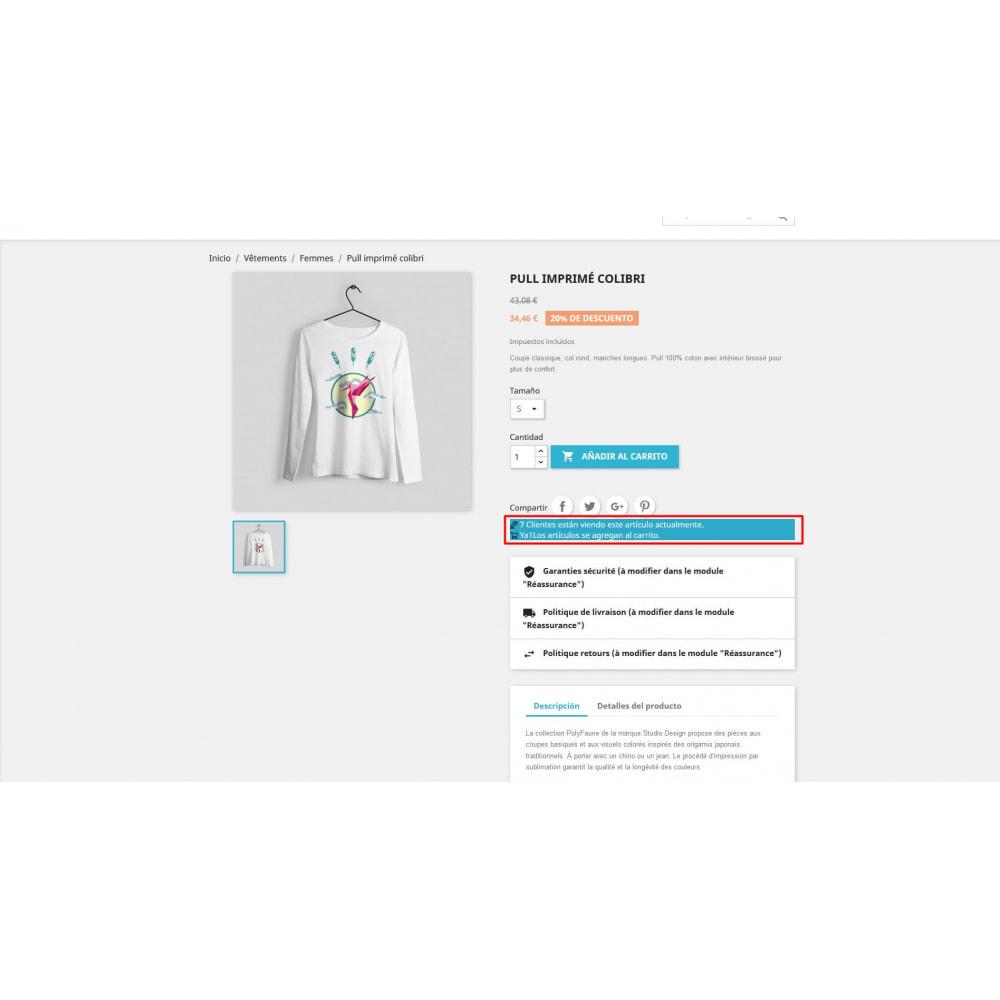 module - Informaciones adicionales y Pestañas - Visitor en la página del producto - 3