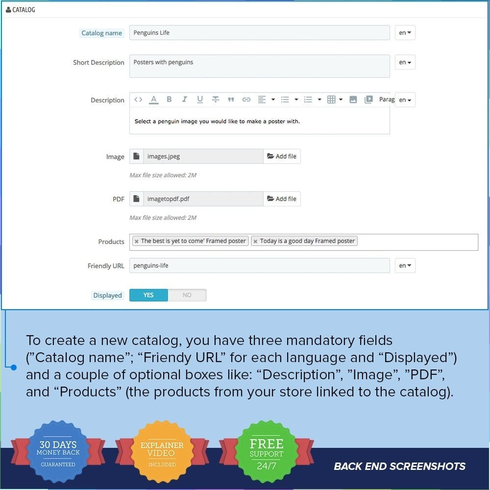 module - Informaciones adicionales y Pestañas - Catálogo PDF en la página del producto - 7