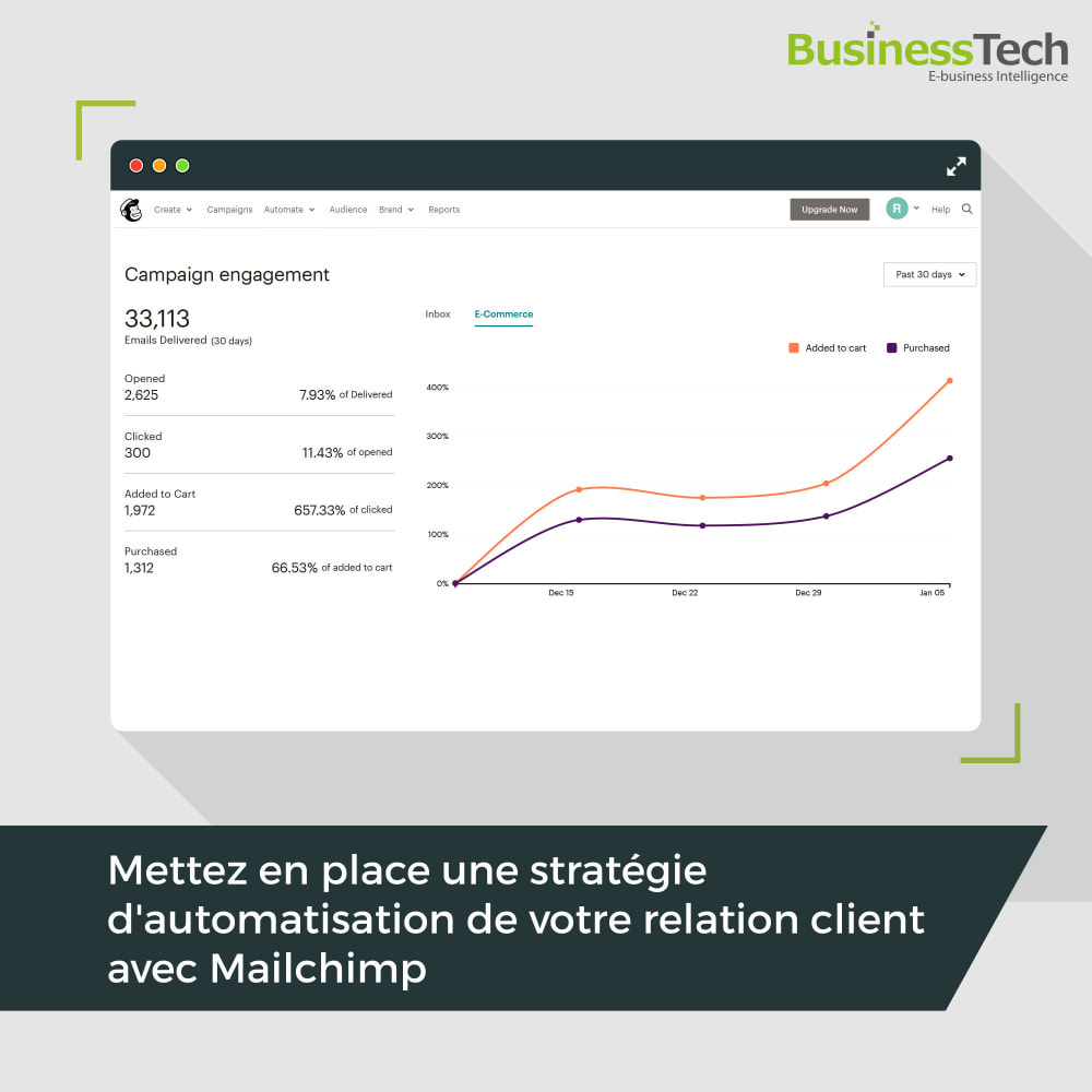 module - Remarketing & Paniers Abandonnés - Newsletter & Marketing automation avec Mailchimp - 1