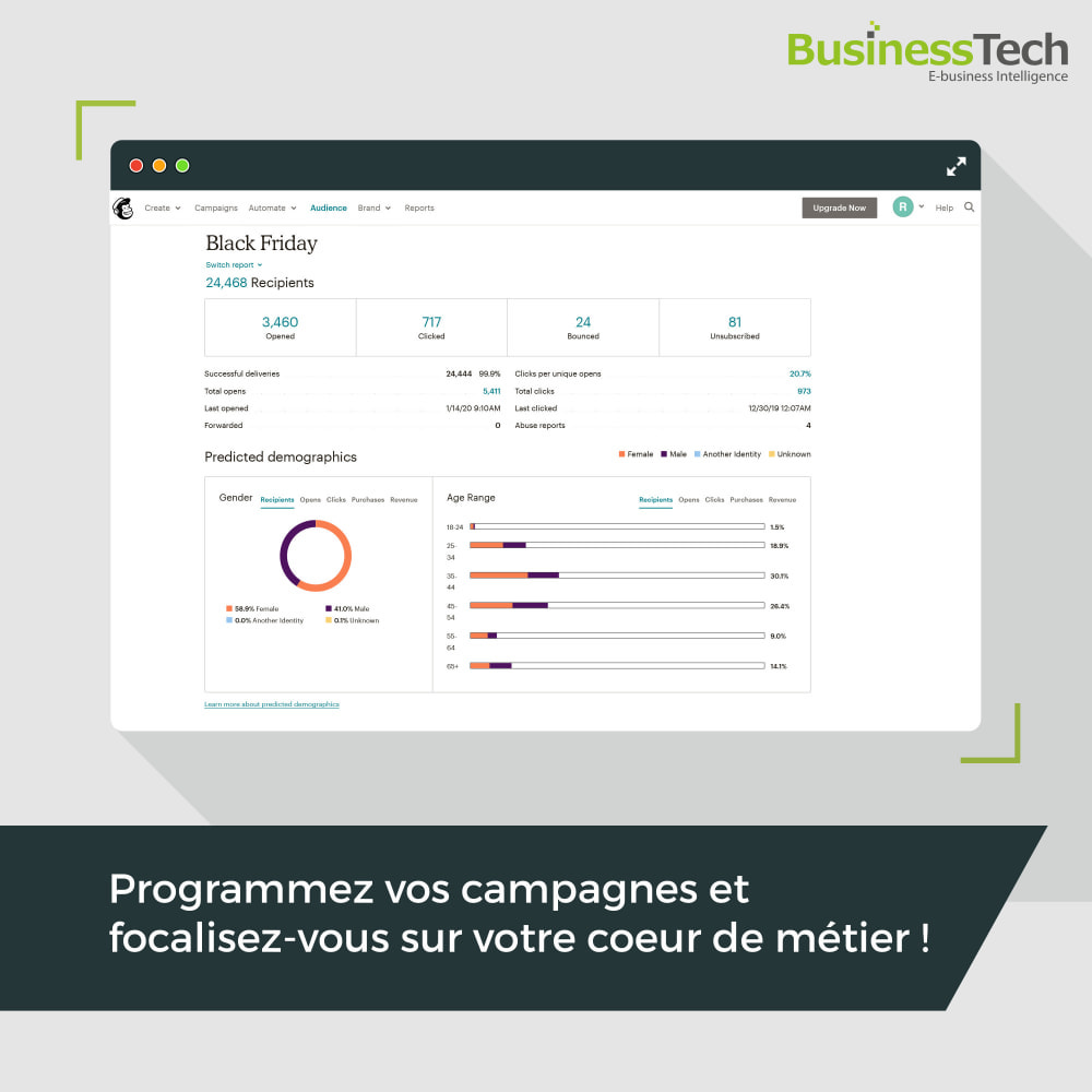module - Remarketing & Paniers Abandonnés - Newsletter & Marketing automation avec Mailchimp - 7