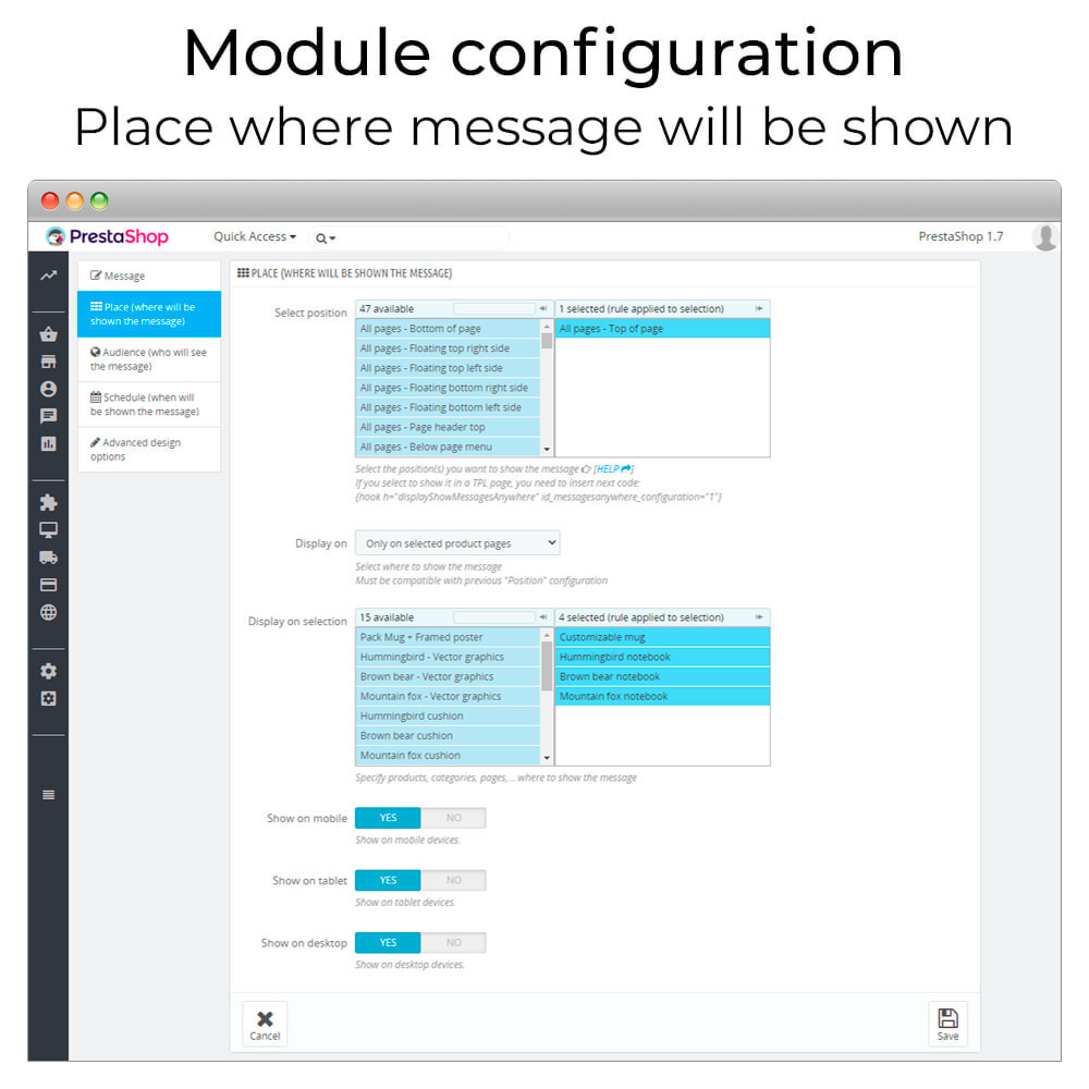 module - Page Customization - Messages Anywhere - 4